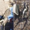 Ladelösung Elektroauto Zuhause EVBox Elvi